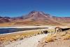 Chili4Tours: lässt mit dem ATV auf den Spuren der Dakar die atemberaubende Naturlandschaft Chiles erleben