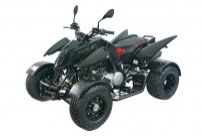 Triton Black Lizard 450 / 400 LoF, Modell 2013