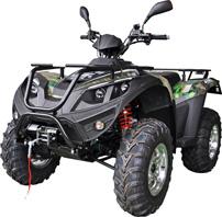 Linhai ATV 420 4x2, Modell 2013