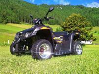 Wippro-Dinli 450 R SuperMoto: tiefer, breiter SuMo-Pimp auf Wunsch mit Leistungssteigerung