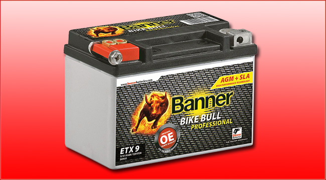 banner batterien bike bull agm professional batterie. Black Bedroom Furniture Sets. Home Design Ideas
